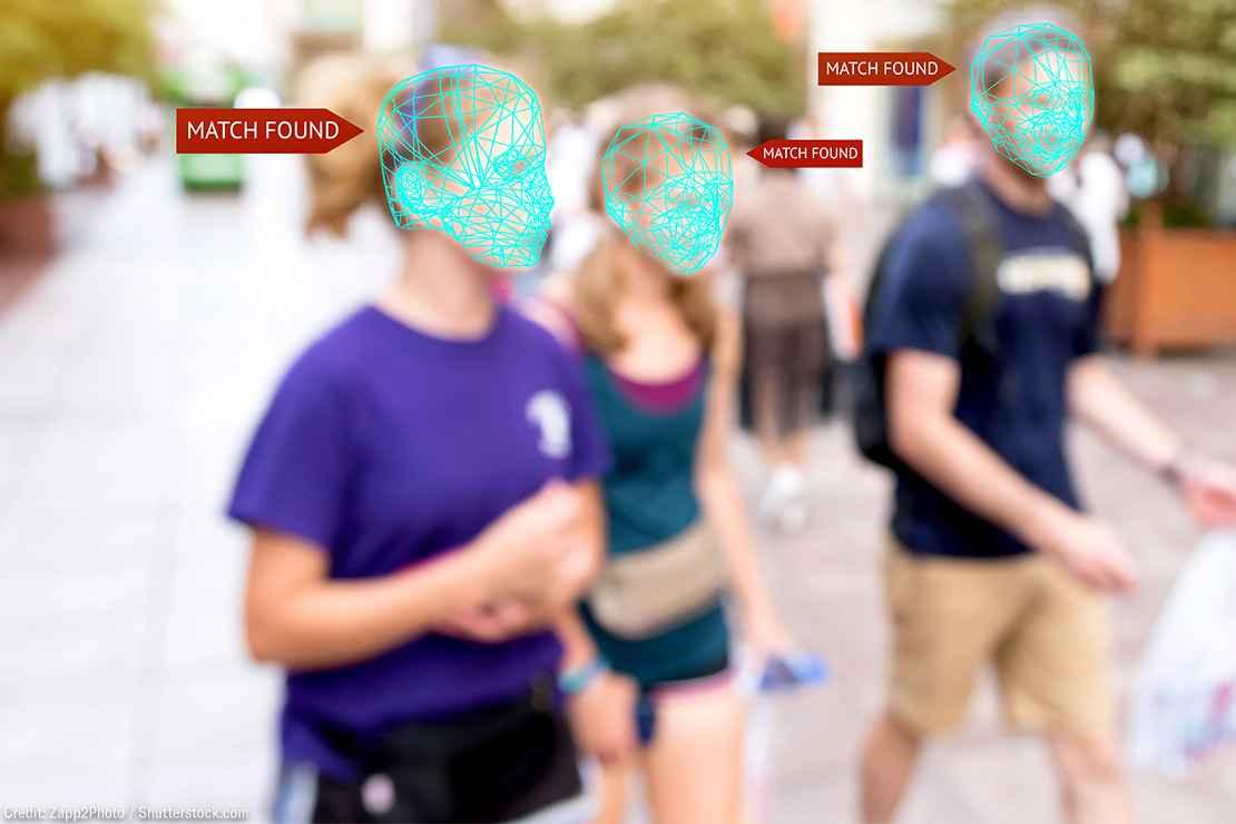 Facial recognition grid