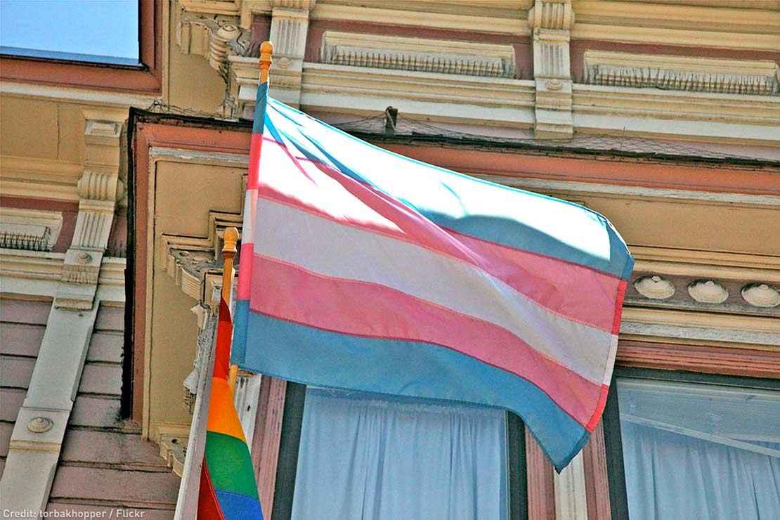 Trans pride flag.